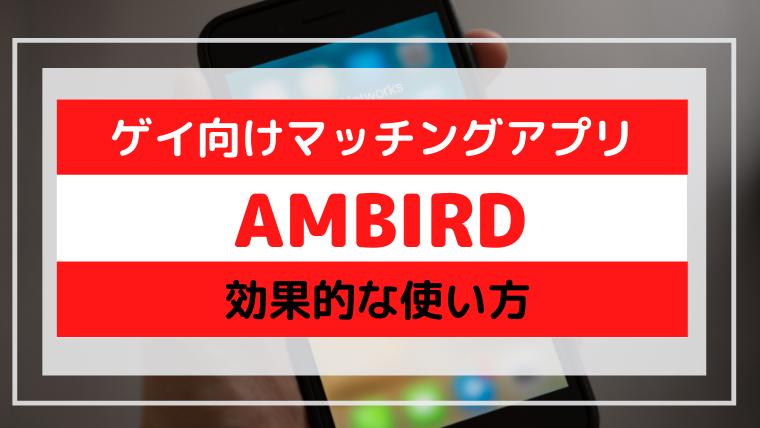 ゲイ マッチングアプリ 日本